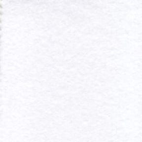 Fleece Fabric Solid White, by the yard